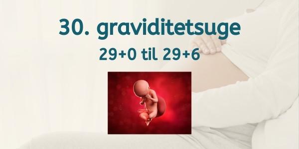 30. graviditetsuge - gravid uge 29