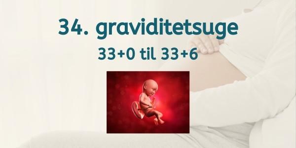 34. graviditetsuge - gravid uge 33