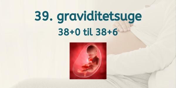 39. graviditetsuge - gravid uge 38